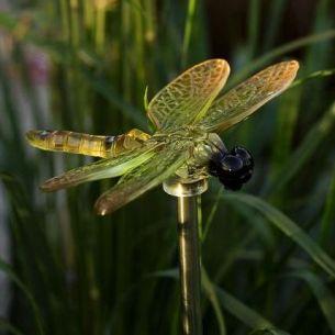 Solarleuchte Libelle im 4-er Set
