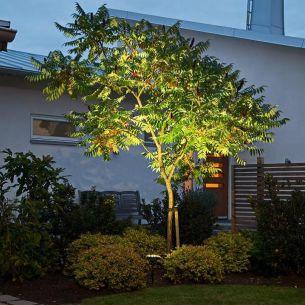 High Power LED-Erdspieß-Wandleuchte, einzelnd oder das 12V-System
