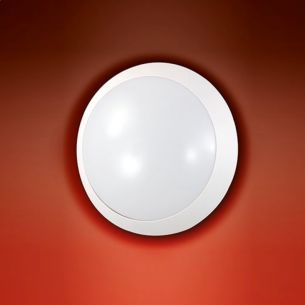 LED-Wand- oder Deckenleuchte - IP65 - Ø 26cm -14W LED in 2 Ausführungen - wählbar mit warmweißer oder neutralweißer Lichtfarbe