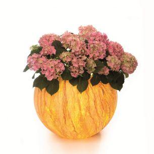 Pflanzgefäß Flora Ø 50cm oder 65cm mit Natursteinbeschichtung