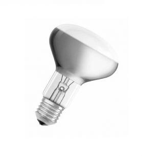 R80 Reflektor 30° Abstrahlwinkel, 60W, E27 1x 60 Watt, 60 Watt, 480,0 Lumen