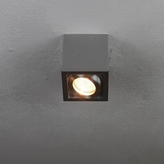 Deckenleuchte mit schwenkbarem Spot, inklusive Leuchtmittel