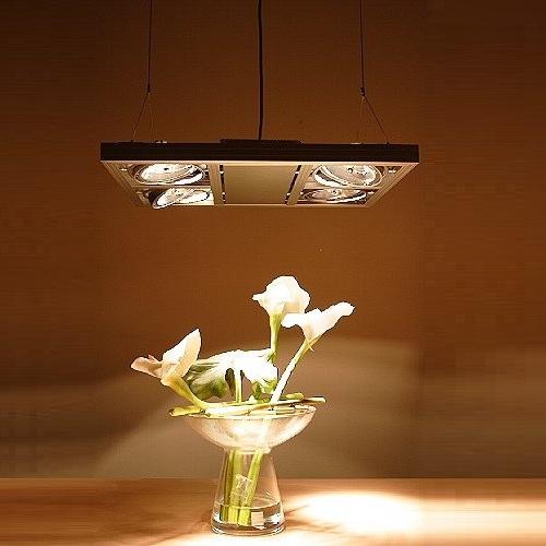Kardan Pendellampe ideal für Tische, Schaufenster oder Repräsentationen